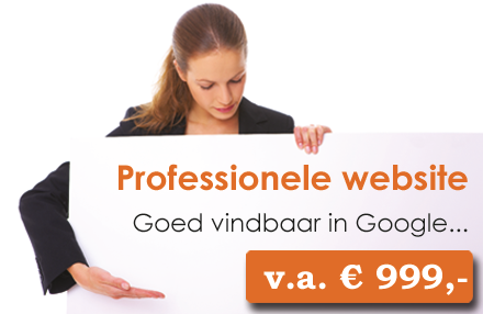Professionele-website-in-den-haag